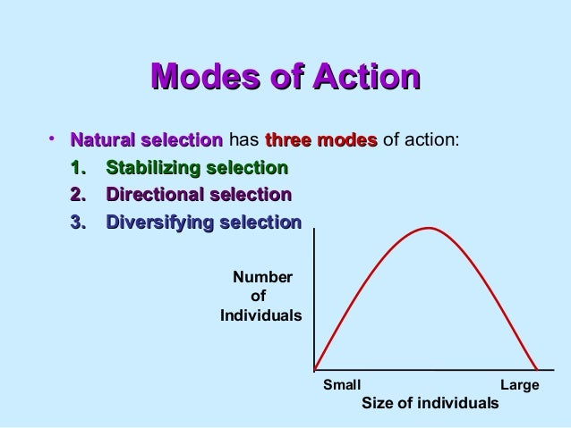 what is an example of stabilizing natural selection