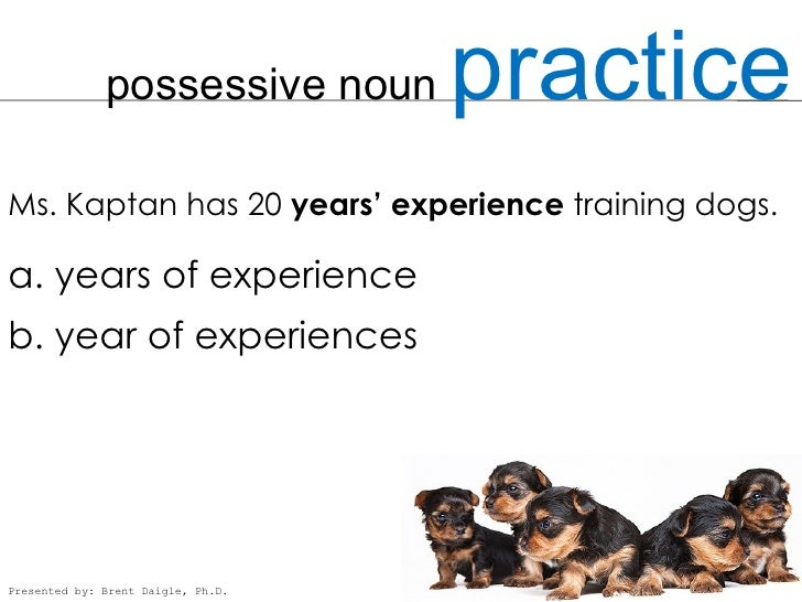 what is a possessive noun example