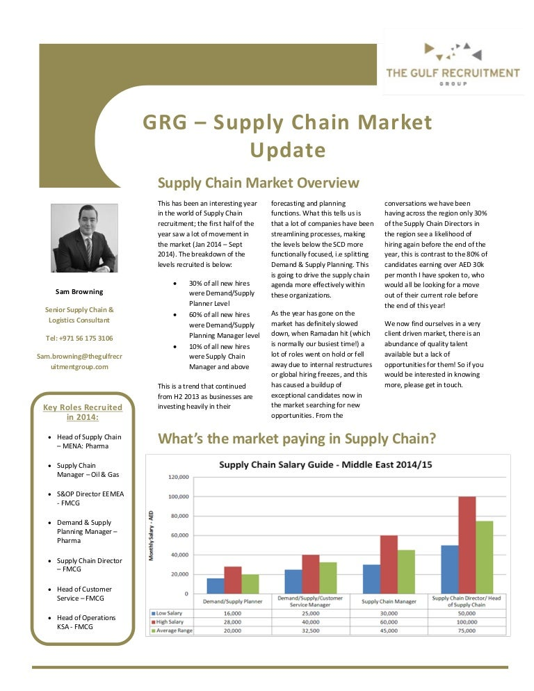 professional summery example for supply chain