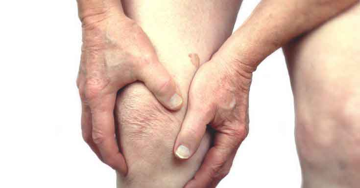 the knee is an example of which type joint