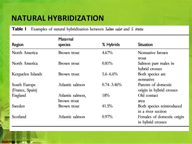 what is an example of hybridization